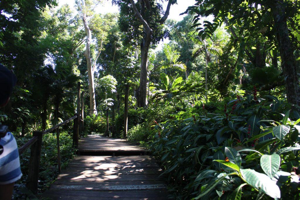 スリーピングジャイアント植物園