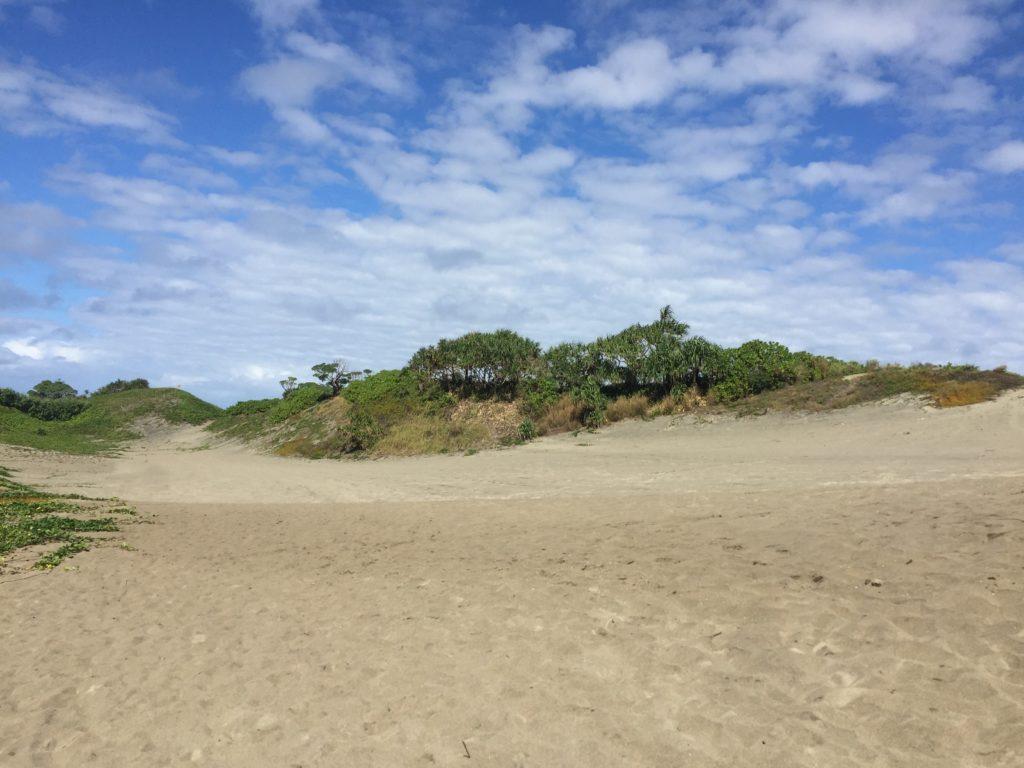 シンガトカ大砂丘